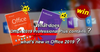 What does Office 2019 Professional Plus contains?