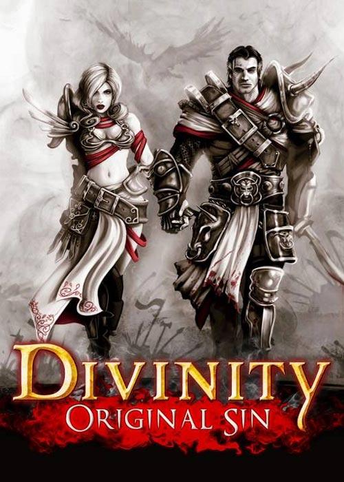 Divinity Original Sin Steam CD Key